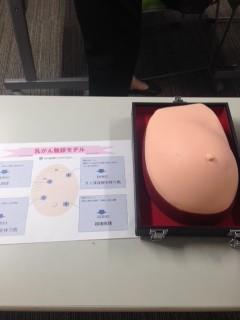大人気の乳がん触診キット。リアルな肌触りです。