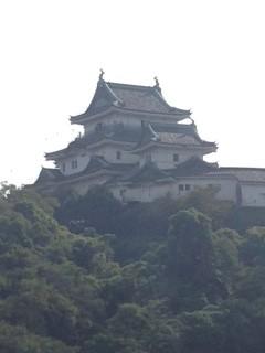 徳川御三家を象徴する虎伏山にそびえる和歌山城